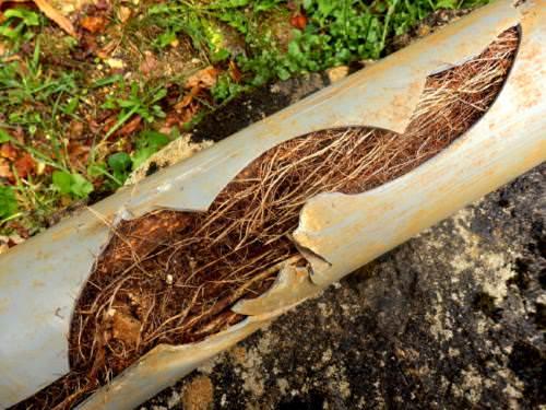 Drain Fran 231 Ais Infiltration D Eau Hem Construction